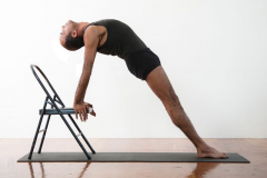 WORKSHOP INTERNACIONAL IYENGAR YOGA COM YOGI ZAIN
